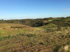 Terreno Mértola (10,5 hectares), Corte do Pinto/Mina