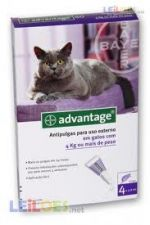 Advantage 80 para Gatos com peso superior a 4 kg