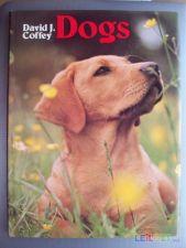 Dogs - livro sobre cães
