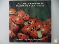 Ladybirds & lobsterds .. scorpions & centipedes