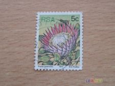AFRICA DO SUL - SCOTT 479 - FLORES