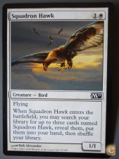 Magic SQUADRON HAWK kk