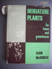 Miniature Plants for home and greenhouse
